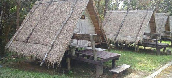 Doi Phu Kha bungalow